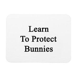 Aprenda proteger conejitos imanes flexibles