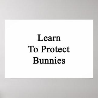 Aprenda proteger conejitos impresiones