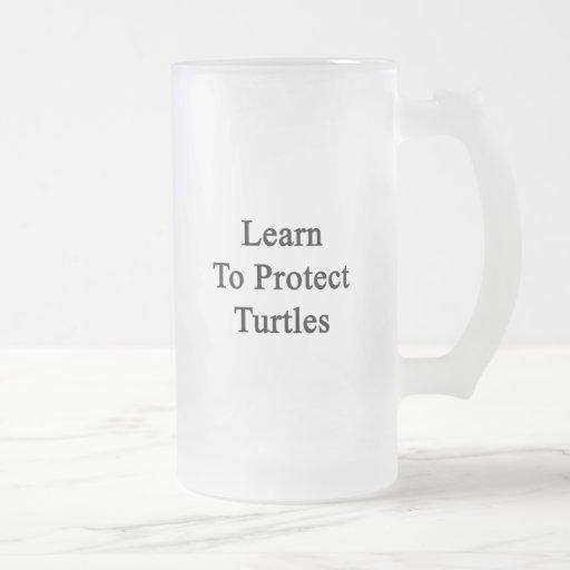 Aprenda proteger tortugas taza cristal mate