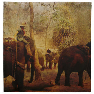 Aprendizaje de los elefantes servilleta