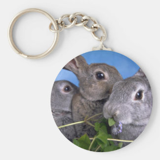 Apricot and Blue Rex Rabbit Keychains