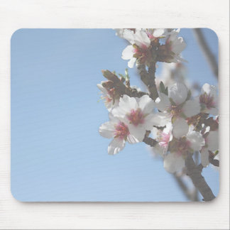 Apricot Bloom Mouse Pad