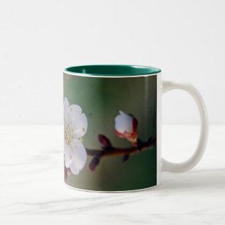 apricot blosom mug