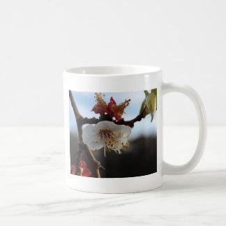 Apricot Blossom Coffee Mug