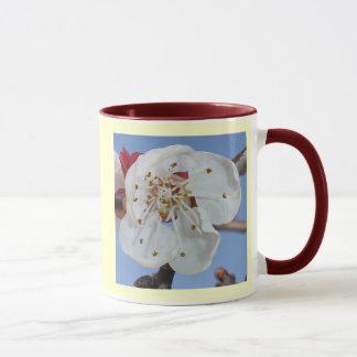 Apricot Blossom Macro Mug