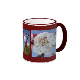 Apricot Blossom Macro Ringer Coffee Mug