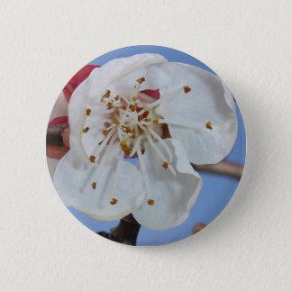 Apricot Blossom Macro Pinback Button