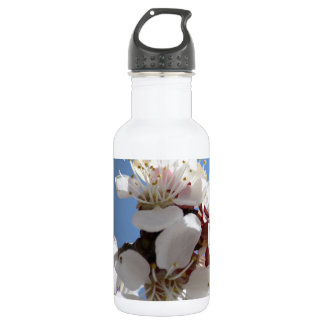 APRICOT BLOSSOMS WATER BOTTLE