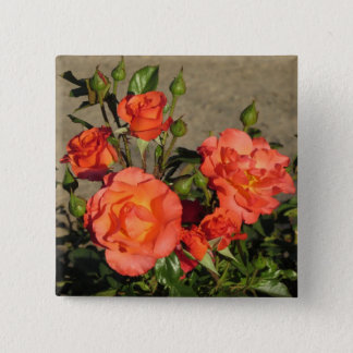 Apricot Cathedral Roses Button