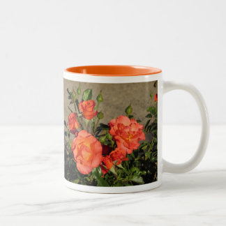 Apricot Cathedral Roses Mugs