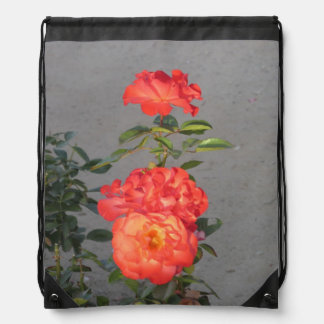 Apricot Cathedral Roses Drawstring Backpack