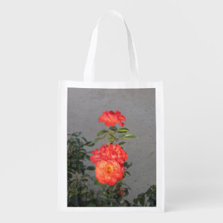 Apricot Cathedral Roses Reusable Grocery Bags