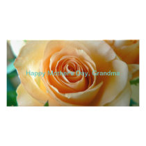 Apricot Colored Rose Closeup Card