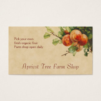 Apricot fruit sales business card