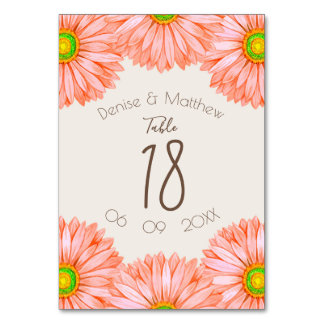 Apricot Gerbera Table Numbers