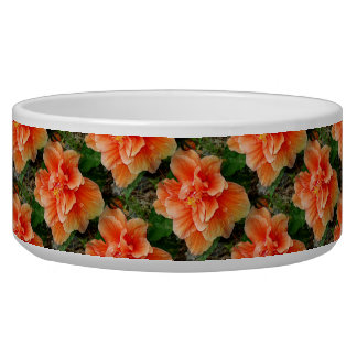 Apricot Hibiscus Tropical Flower Dog Water Bowls