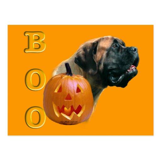 Apricot Mastiff Boo Postcard