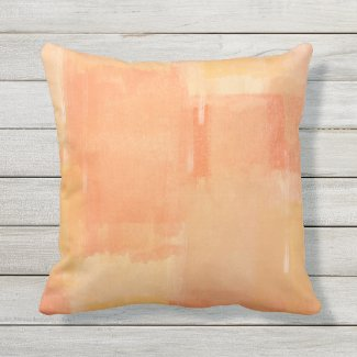 Apricot Paint Test Outdoor Pillow 16x16