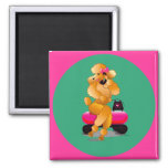 Apricot Poodle 50's Style Magnet