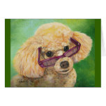 Apricot poodle in shades Art Original Greeting Card