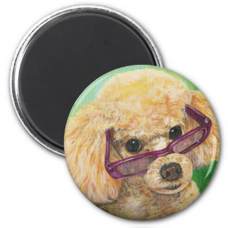 Apricot poodle in shades Art Original Magnet