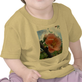 APRICOT QUINCE BLOOM TEES