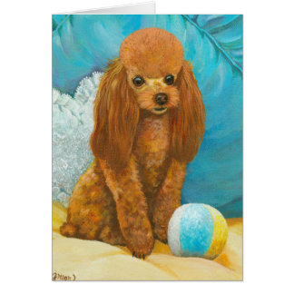 Apricot Red Poodle with Ball Greeting Cards