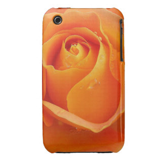 Apricot Rose Cellphone Case iPhone 3 Case-Mate Cases