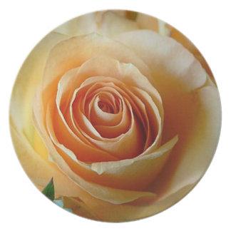 Apricot Rose Dinner Plate