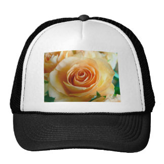 Apricot Rose Trucker Hat