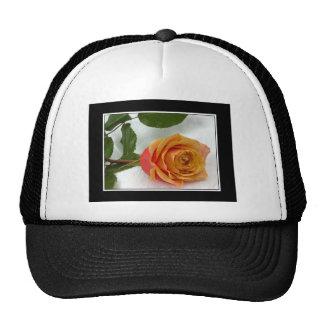 Apricot Rosebud Trucker Hat