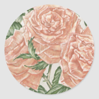 Apricot Roses Flower Garden Painting Classic Round Sticker