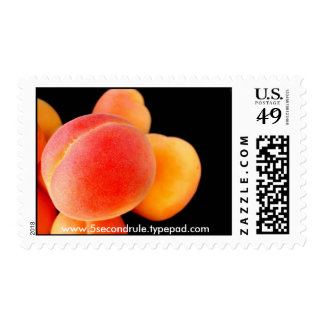 Apricot Stamp