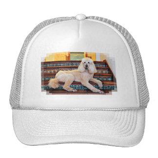 Apricot Standard Poodle - Bocelli Trucker Hats