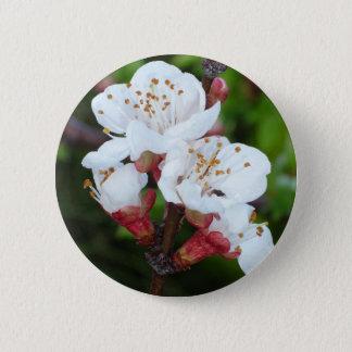 Apricot Tree Pinback Button