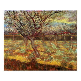 Apricot Trees in Blossom by Vincent van Gogh Poster