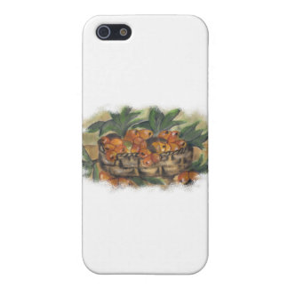 APRICOTS CASE FOR iPhone 5