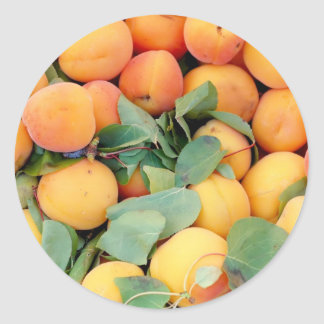 Apricots Classic Round Sticker