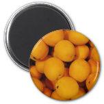 Apricots Magnet