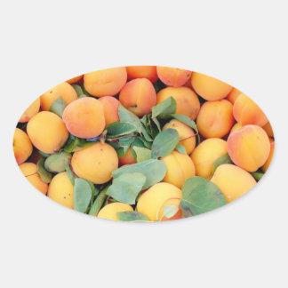 Apricots Oval Sticker