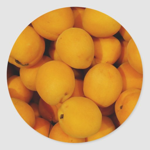 Apricots Round Stickers