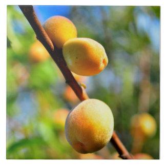 Apricots Tiles