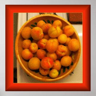 Apricotta Print