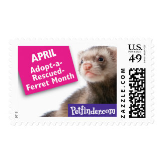 APRIL - Adopt-a-Rescued-Ferret Month Postage Stamp