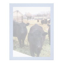 April Cattle Letterhead