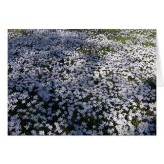 April Flowers--Card Card