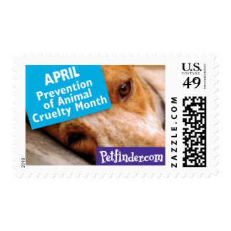 APRIL - Prevention of Animal Cruelty Month Postage Stamp