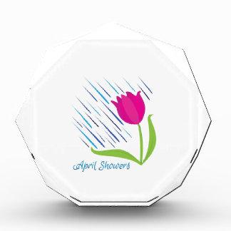 April Showers Acrylic Award