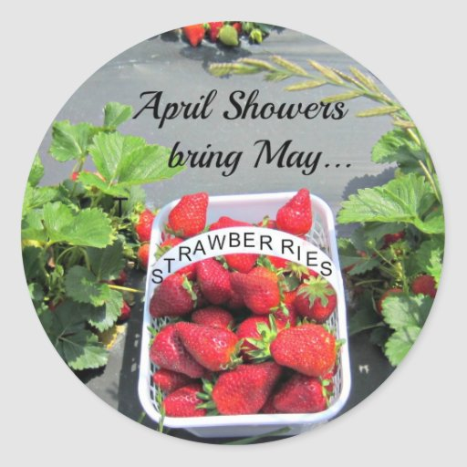 April Showers bring May...STRAWBERRIES! Sticker