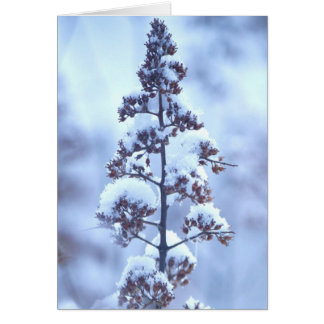 April Snow Stationery Note Card